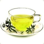 Green Tea - Prostate Cancer