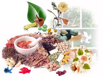 ayurvedic medicine - natural herbs and therapy
